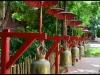 chiang_mai21