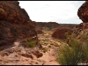 kings_canyon37