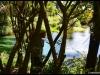 Rotorua Taupo